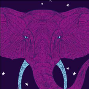 African Nights by LieblingsTee - Bio Rooibox mit Vanillenote